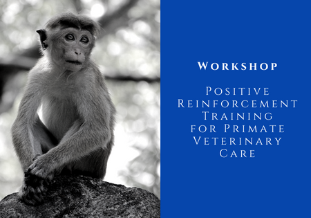 Positive Reinforcement Training for Primate Vet Care